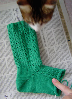 cloverleaf sock progress